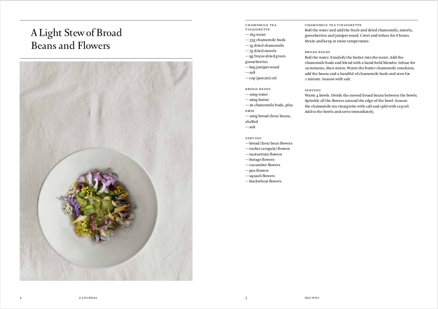 By Rene Redzepi from A Work in Progress: A Journal copyright Phaidon 2019