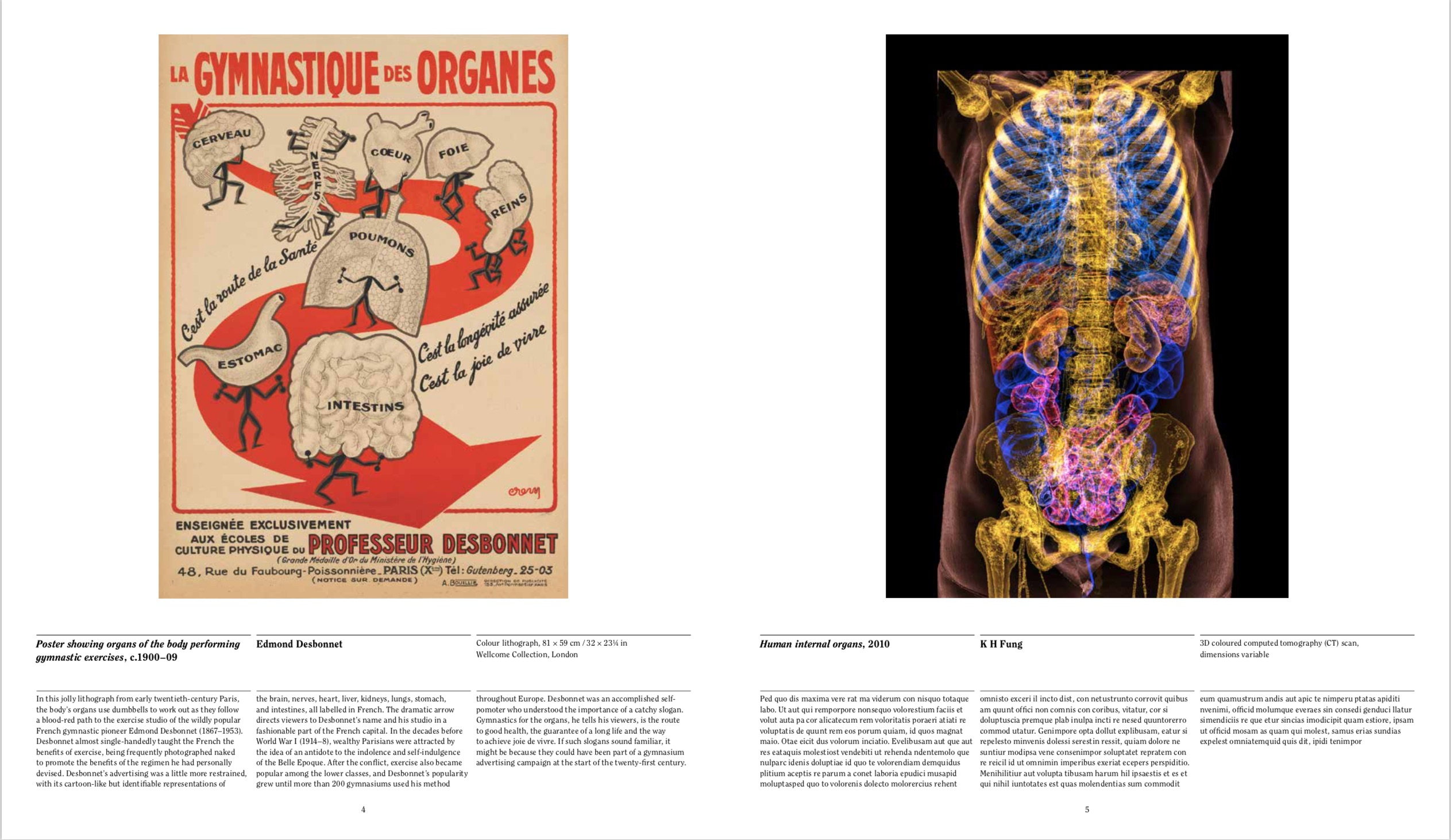 By Phaidon Editors from Anatomy: Exploring the Human Body copyright Phaidon 2019