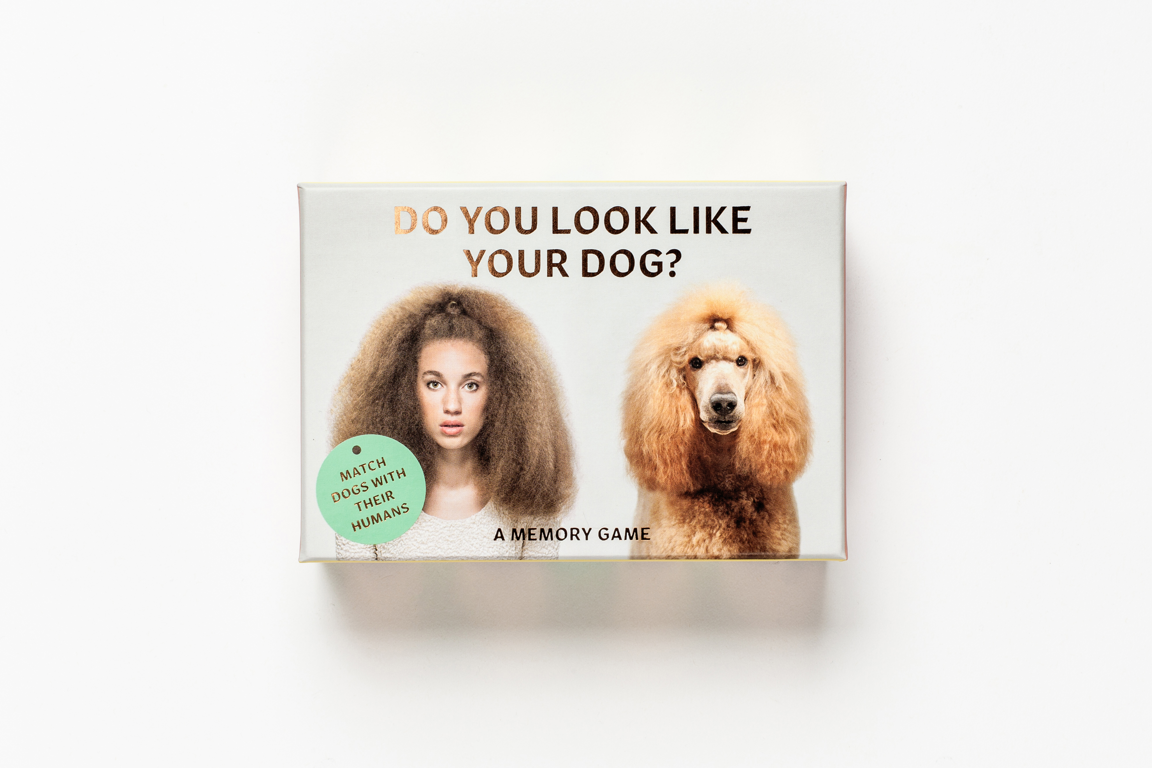 From Do you look like your dog?. Courtesy of Laurence King Publishing.