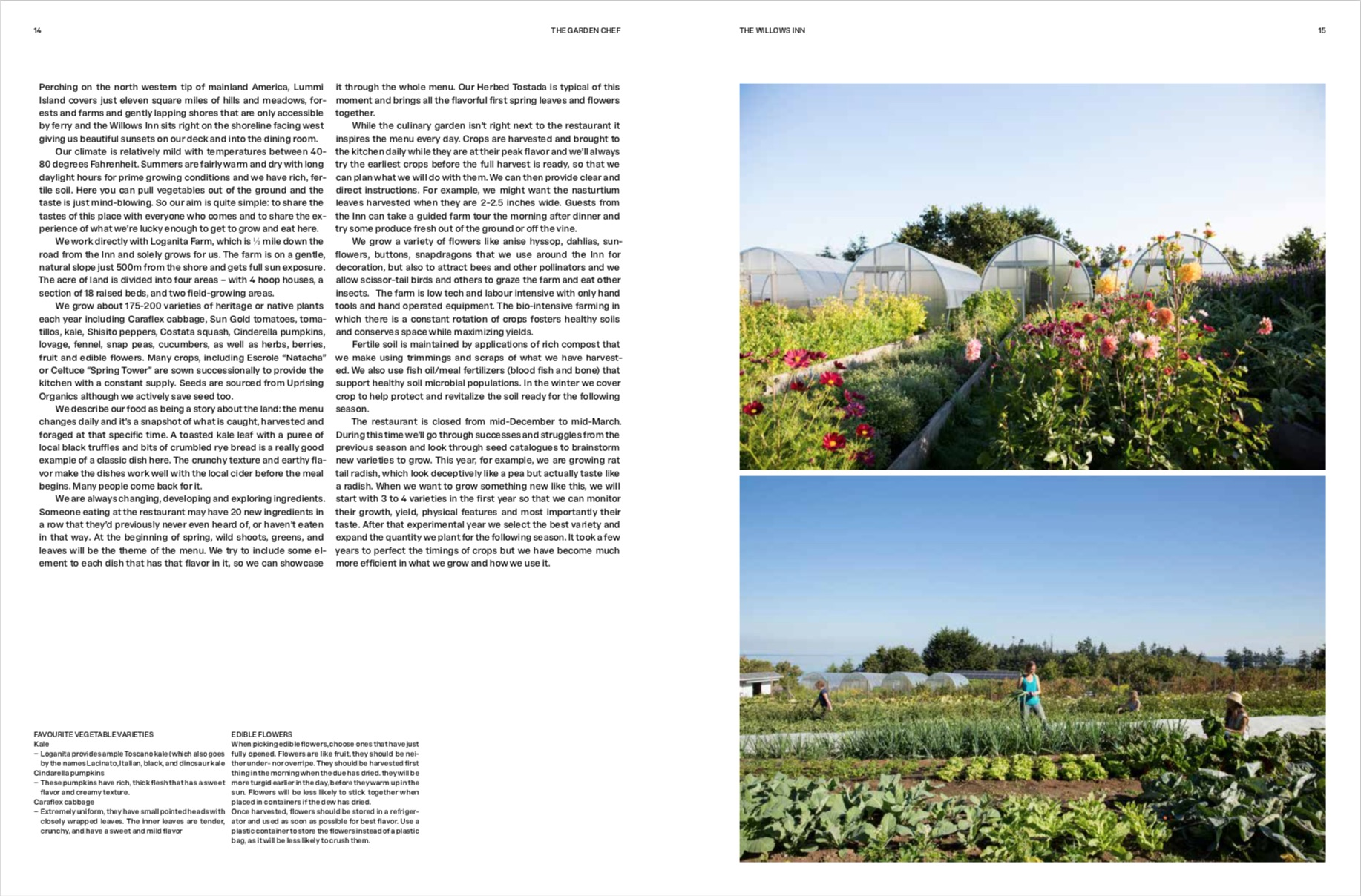 By Phaidon Editors from The Garden Chef: Recipes and Stories from Plant to Plate copyright Phaidon 2019