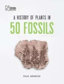 A History of Plants in 50 Fossils
