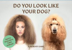 Do You Look Like Your Dog? Match Dogs with Their Humans: A Memory