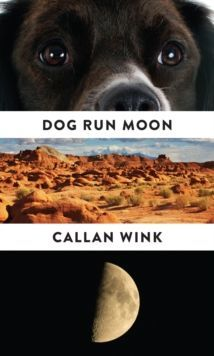 Dog Run Moon