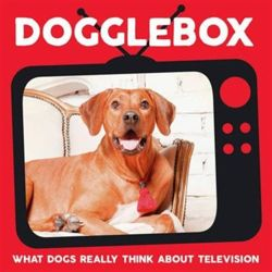 Dogglebox What Dogs Really Think About Television