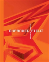 Expanded Field Installation Architecture Beyond Art
