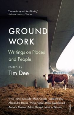 Ground Work : Writings on People and Places