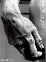 Michelangelo Paintings, Sculpture, Architecture