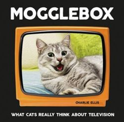 Mogglebox What Cats Really Think About Television