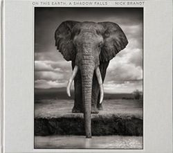 "Nick Brandt: On This Earth ""On This Earth, A Shadow Falls"""