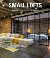 Small Lofts Remodelling Tiny Open Spaces