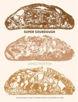 Super Sourdough : The Foolproof Guide to Making World-Class Bread at Home