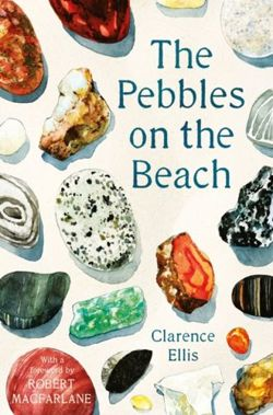 The Pebbles on the Beach A Spotter's Guide