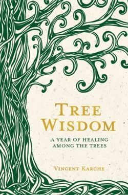 Tree Wisdom : A Year of Healing Among the Trees