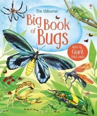 Big Book of Bugs (Big Books)