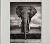 Nick Brandt On This Earth, A Shadow Falls