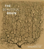 Beautiful Brain: The Drawings of Ramon y Cajal The Drawings of Ramon y Cajal