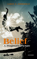 Belief A Pragmatic Picture