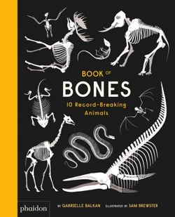 Book of Bones 10 Record-Breaking Animals