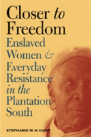 Closer to Freedom Enslaved Women and Everyday Resistance in the Plantation South