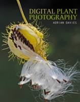 Digital Plant Photography For Beginners to Professionals
