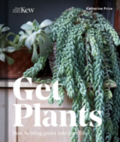 Get Plants How to Bring Green into Your Life