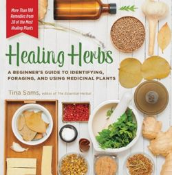 Healing Herbs: A Beginner's Guide to Identifying, Foraging, and Using Medicinal Plants