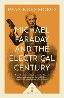 Icon Science: Michael Faraday and the Electrical Century (Icon Science)