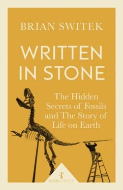 Icon Science: Written in Stone