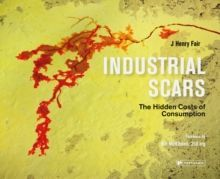 Industrial Scars The Hidden Cost of Consumption