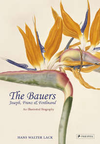 The Bauers: Masters of Botanical Illustration