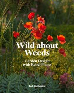 Wild about Weeds : Garden Design with Rebel Plants