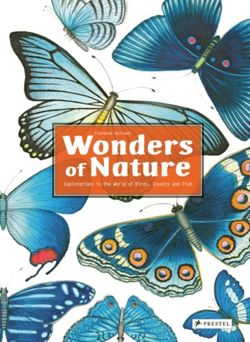 Wonders of Nature : Explorations in the World of Birds, Insects and Fish